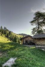 Preview iPhone wallpaper Slope, grass, trees, wood hut, sunshine