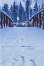 Preview iPhone wallpaper Snow, bridge, trees, winter