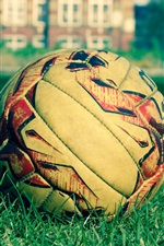 Preview iPhone wallpaper Soccer ball, grass