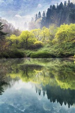 Preview iPhone wallpaper South Korea, lake, trees, sakura, spring