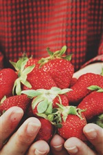 Preview iPhone wallpaper Strawberries in hands