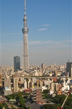 Preview iPhone wallpaper Tokyo, Japan, tower, dusk, city
