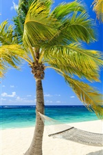 Preview iPhone wallpaper Tropical, paradise, sea, beach, palm trees, hammock, summer