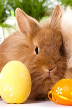 Preview iPhone wallpaper Two rabbits, eggs, Easter