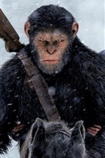 Preview iPhone wallpaper War for the Planet of the Apes 2017