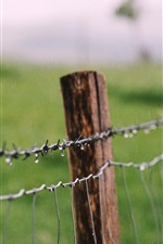 Preview iPhone wallpaper Wire fence, water drops