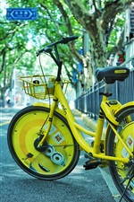 Preview iPhone wallpaper Yellow bike, road, street, city