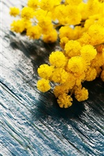 Preview iPhone wallpaper Yellow flowers, spring, mimosa, wood board