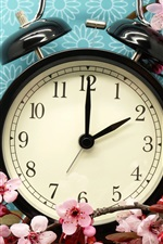 Preview iPhone wallpaper Alarm clock and pink flowers