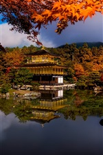 Autumn, trees, lake, house, park, Japan