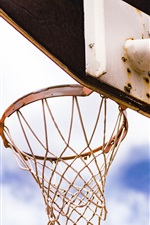 Preview iPhone wallpaper Basketball net