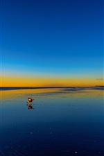Preview iPhone wallpaper Beach, sea, sunset, dog