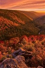 Paisagem bonita do outono, montanhas, floresta, pôr do sol