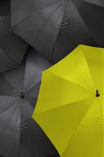 Black umbrella, one yellow