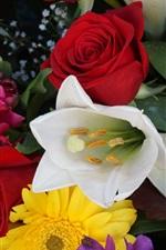Preview iPhone wallpaper Bouquet, flowers, tulip, gerbera, rose