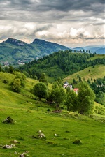 Preview iPhone wallpaper Brasov, Romania, meadows, field, mountains, grass, clouds