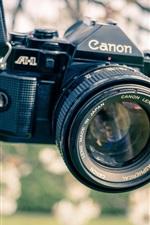 Preview iPhone wallpaper Canon camera, garden