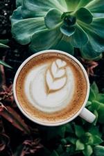 iPhone обои Кофе и комнатные растения, суккулентные растения