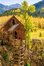 Preview iPhone wallpaper Colorado, water mill, Crystal Mill, forest, autumn, USA