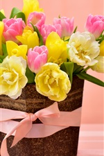 Colorful tulips, yellow and pink flowers