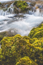 Creek, water, waterfalls, stones, moss