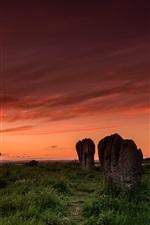 Duddo stone circle, sunset, grass