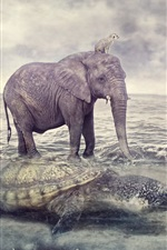 Preview iPhone wallpaper Elephant, turtle, sea, creative