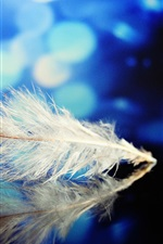 Preview iPhone wallpaper Feather, reflection, mirror, blue background, glare