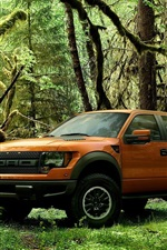 Preview iPhone wallpaper Ford Raptor orange pickup in the forest