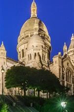 França, Paris, Montmartre, castelo, noite, luzes, árvores