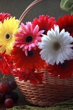 Preview iPhone wallpaper Gerbera flowers, basket, grapes