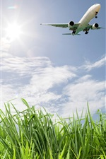 Preview iPhone wallpaper Grass, field, plane, sky, clouds, sun