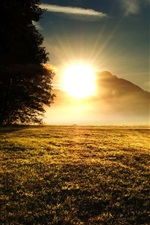 Preview iPhone wallpaper Grass, trees, mountains, sunrise, sun rays