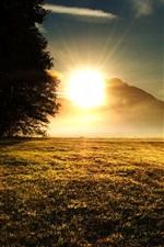 iPhone обои Трава, деревья, горы, восход солнца, солнечные лучи