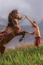 Preview iPhone wallpaper Horse and man, field
