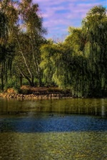 Preview iPhone wallpaper Hungary, Gyongyos, trees, lake, park