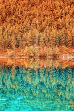 Preview iPhone wallpaper Lake, blue water, trees, forest, reflection