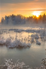 Preview iPhone wallpaper Lake, winter, snow, trees, sunset