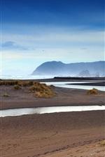 iPhone обои Новая Зеландия, пляж, трава, море, рассвет