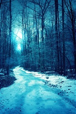 Preview iPhone wallpaper Night, forest, trees, light, path, snow