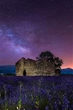 Night, starry, stars, lavender flowers, stones house