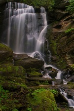 Preview iPhone wallpaper North Carolina, waterfall, rhododendrons, rocks