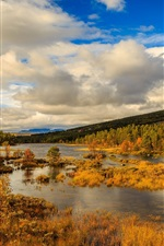 Preview iPhone wallpaper Norway, autumn, mountains, trees, river, clouds
