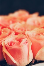 Preview iPhone wallpaper One box of pink roses