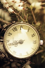 Preview iPhone wallpaper Pocket watch, flowers, retro style