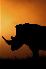 Preview iPhone wallpaper Rhino silhouette, Africa, sunset, evening