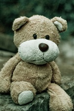 Preview iPhone wallpaper Sadness teddy bear, toy
