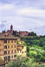 Preview iPhone wallpaper Siena, Italy, city, trees, buildings