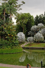 Preview iPhone wallpaper Singapore, Botanic Gardens, park, trees, grass