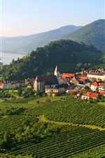 Spitz, Austria, plantation, field, mountains, trees, river, houses